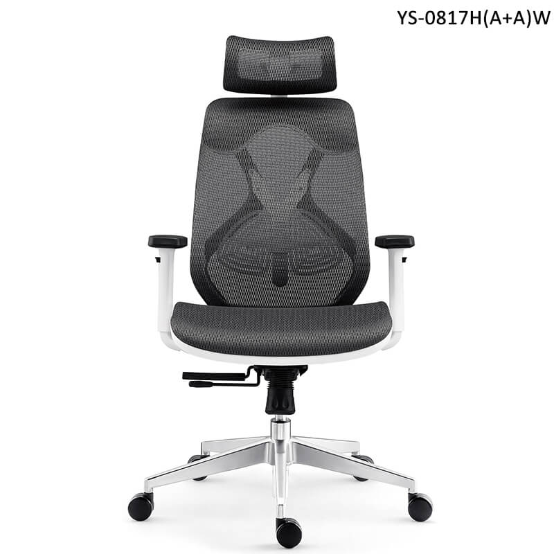 Ergonomic Desk Chair With Adjustable Headrest