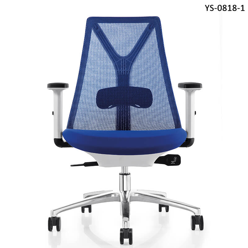 Ergonomic Task Chair With Lumbar Support
