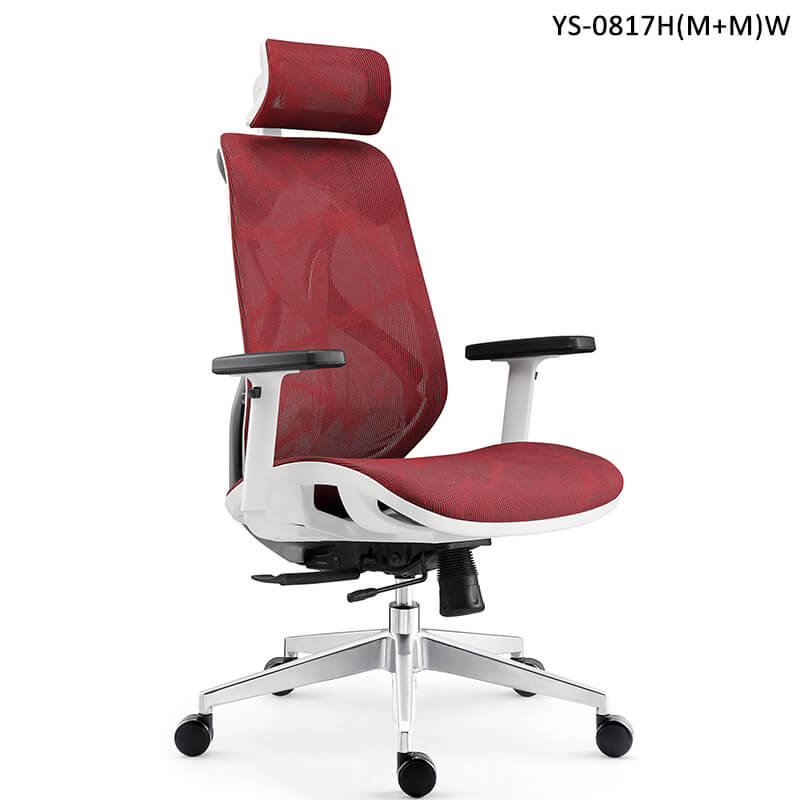 ergonomic desk chair for back pain