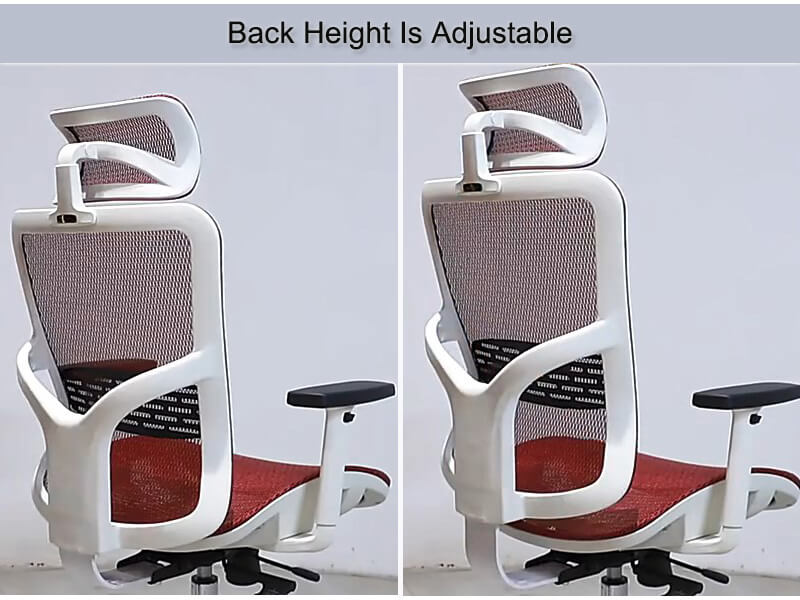 Ergonomic office chair with adjustable back height